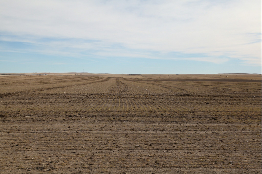 diamond brothers, land auction, reckagri, land for sale in Colorado