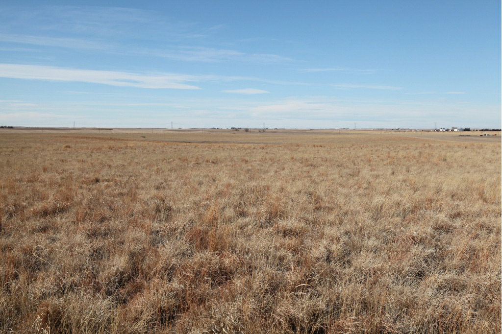 cheyenne county, nebraska farmland for sale,