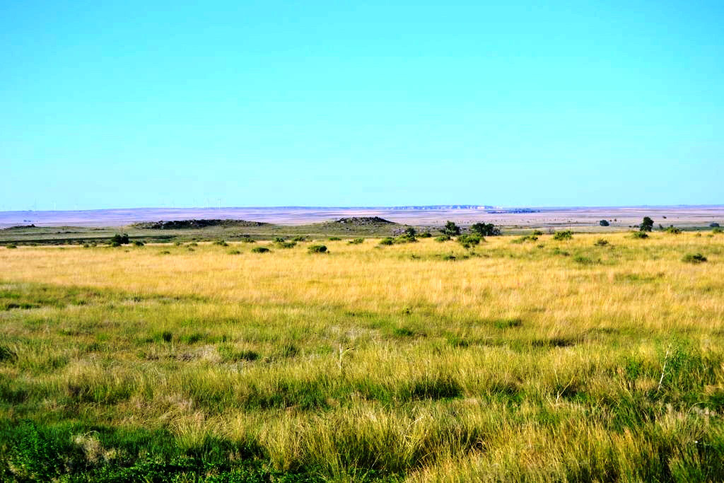 Land-for-Sale-in-Colorado-Plains.jpg