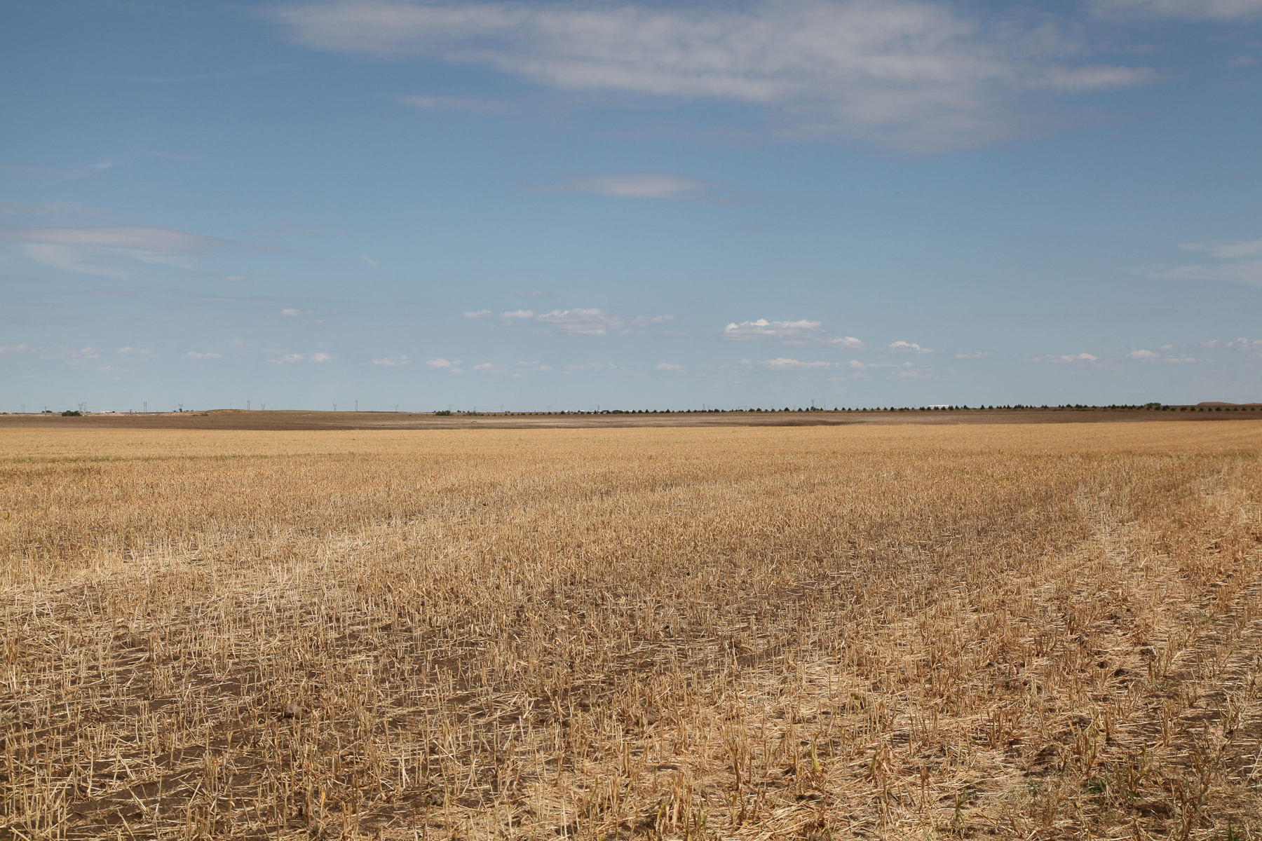 Parcel-2B-millet-stubble-looking-to-summerfallow.jpg