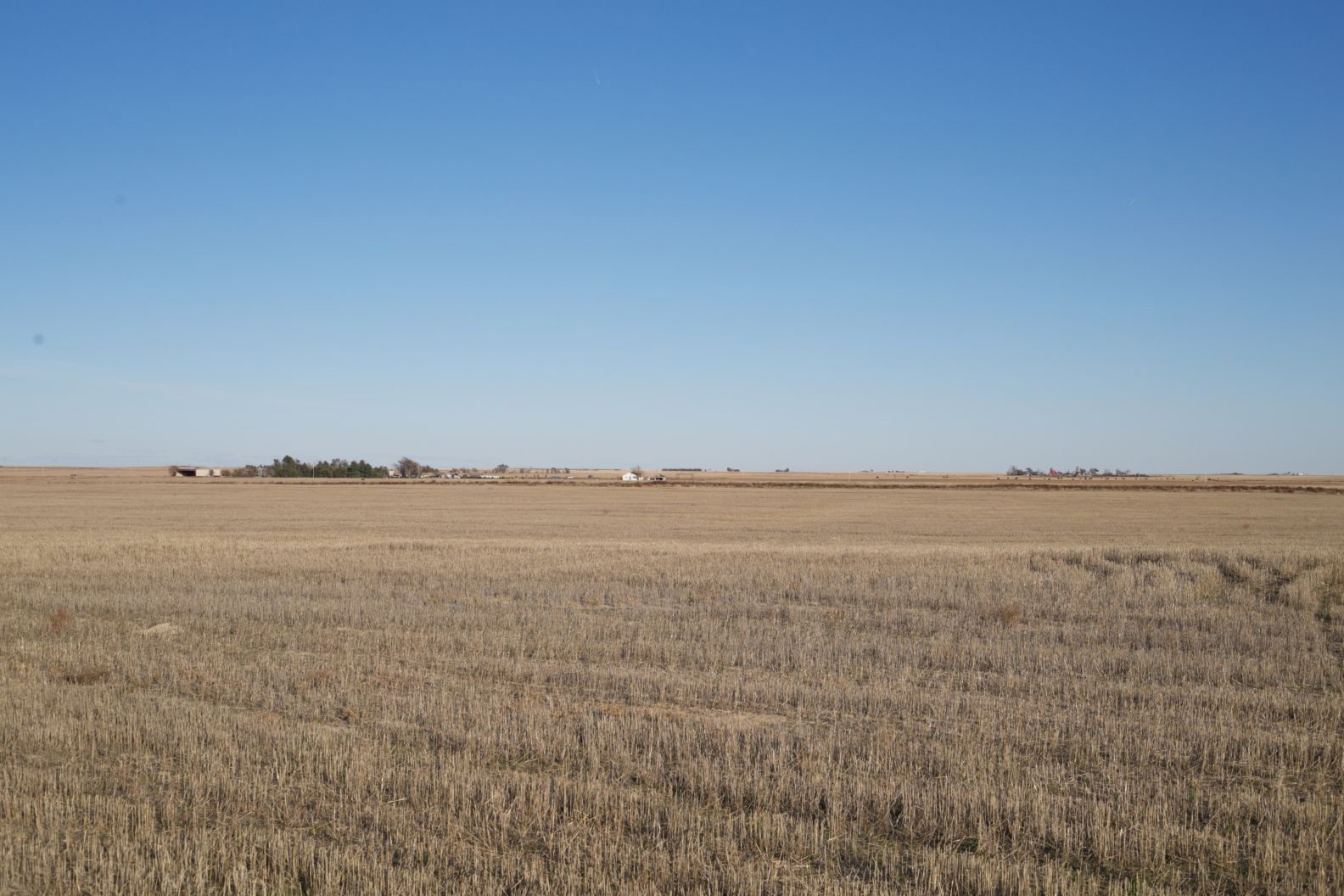 Parcel-8-wheat-stubble-to-the-north.jpg