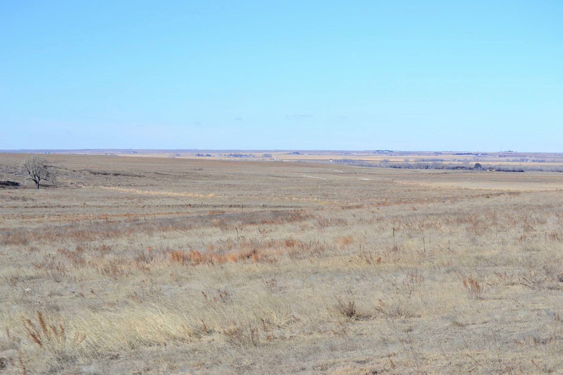 Pasture---view-to-NW.jpg