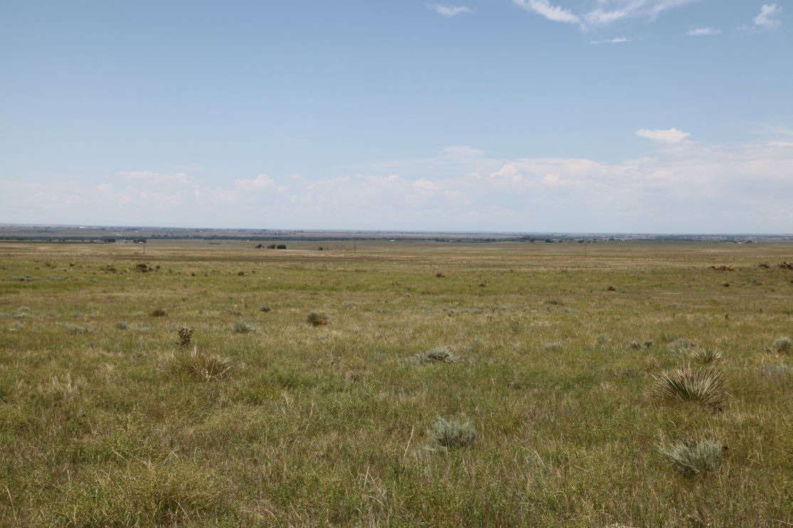 View-from-pasture-to-SW-on-2B.jpg