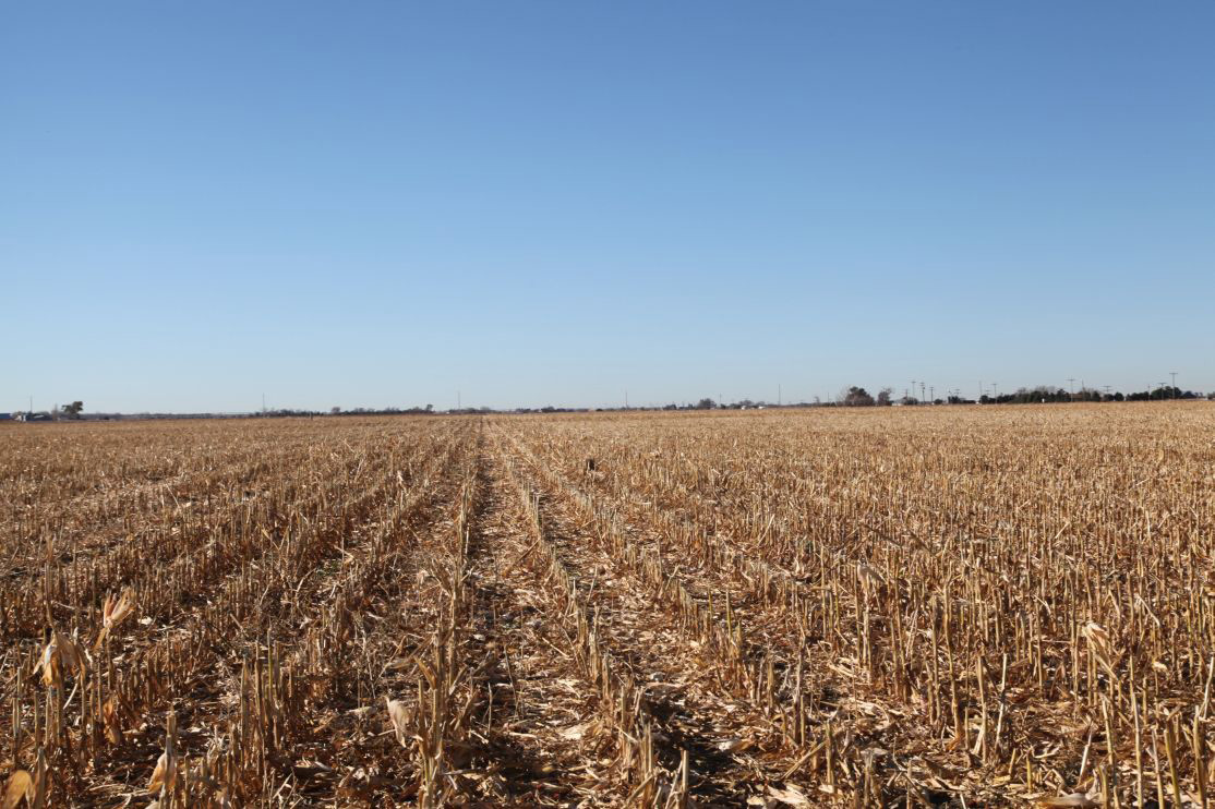 level-corn-ground-on-south-parcel-1.jpg
