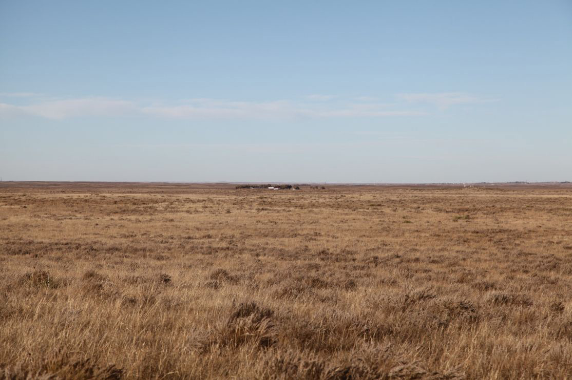 west-pasture-with-view-to-north-neighbor.jpg